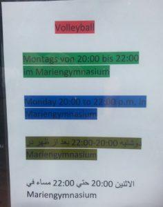 sport-volleyball-volkswald